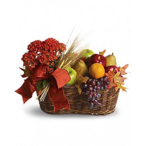 So delicious Fruits