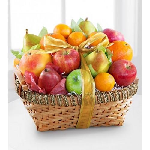 Gourmet Delight Fruit